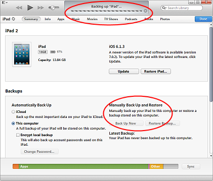 The iTunes device backup screen